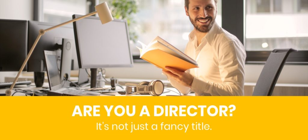 Company Director role