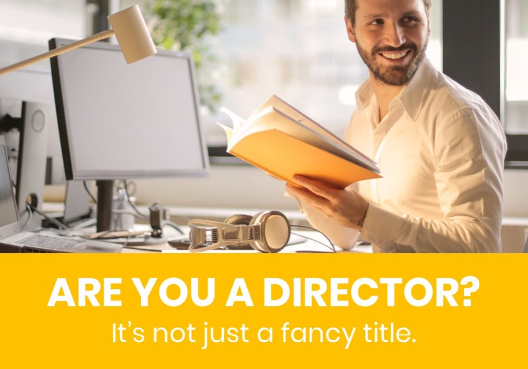 Company Director role